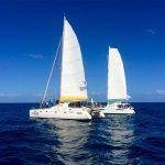 charter location croisiere dal ocean skipper nouvelle caledonie